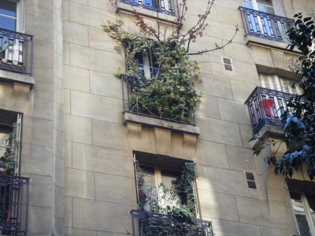 Forêt-au-balcon-rue-Bachaumont